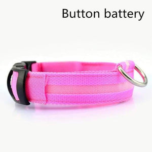 Led Pet Safety Collar - Battery Pink / Xs - Dog