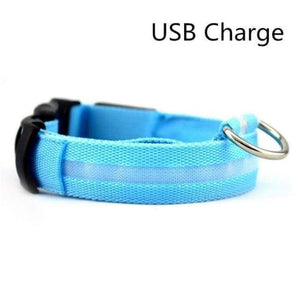 Led Pet Safety Collar - Usb Blue / Xs - Dog