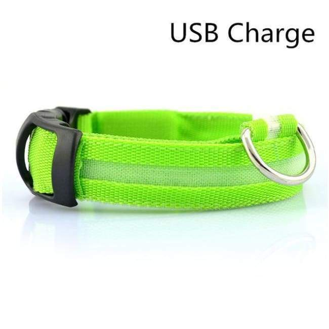 Led Pet Safety Collar - Usb Green / Xs - Dog