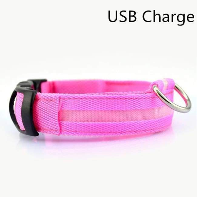 Led Pet Safety Collar - Usb Pink / Xs - Dog