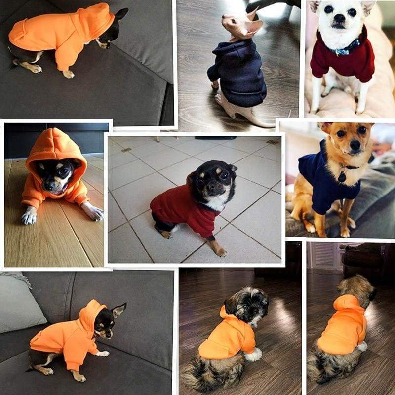 Super Cute Small Pet Hoodie - Dog