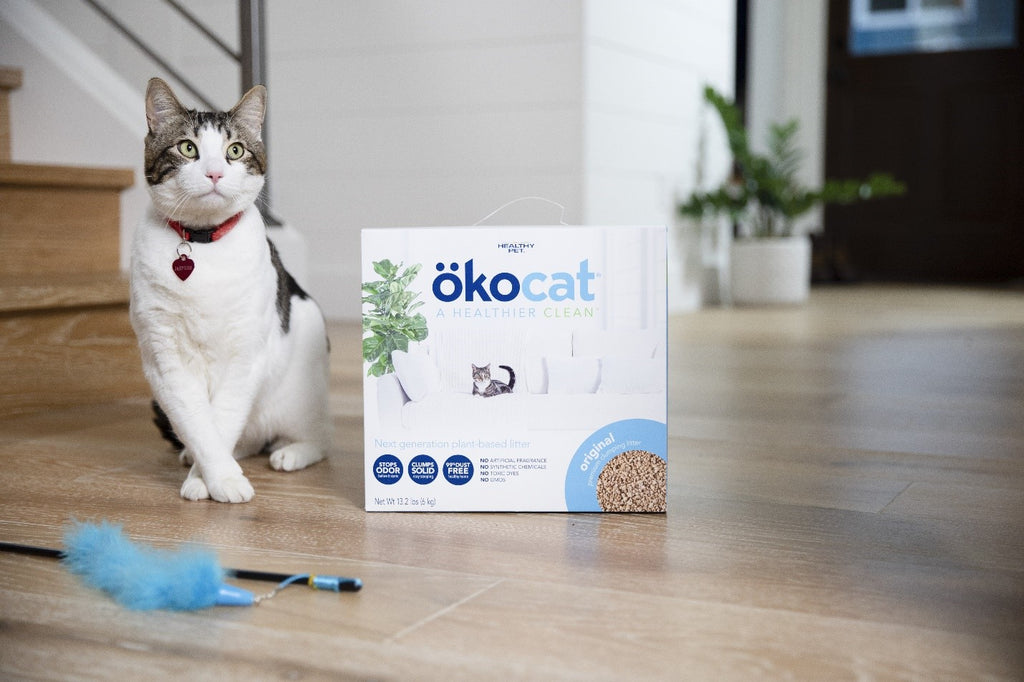 okocat natural litter