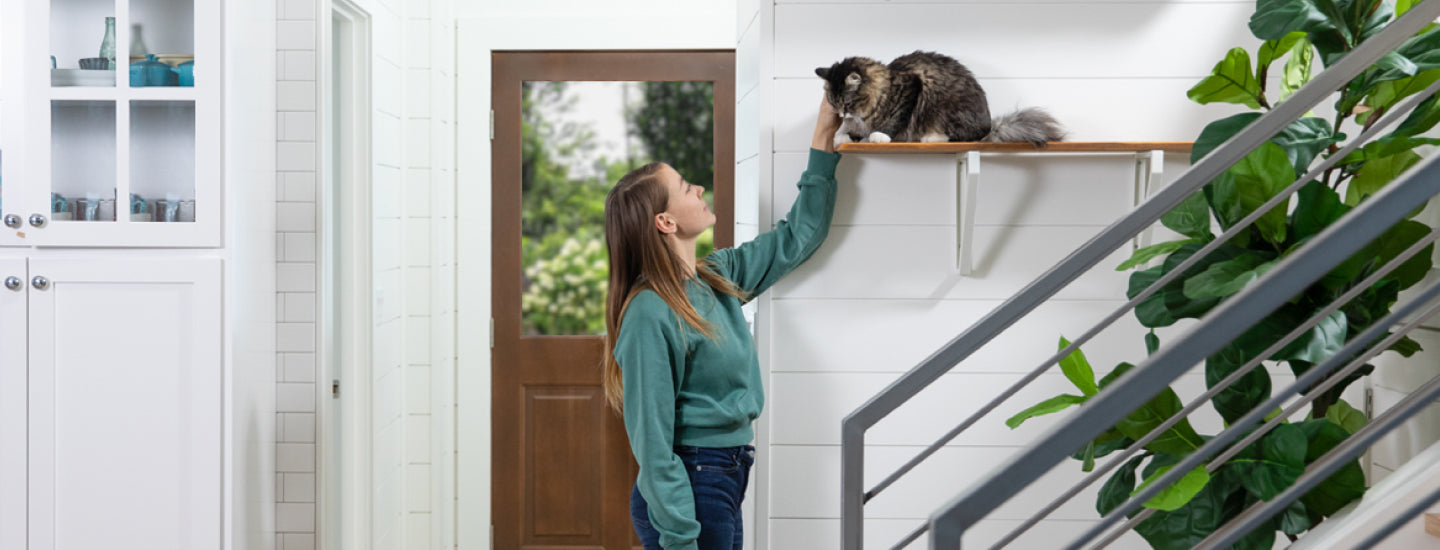 Standing woman with a cat