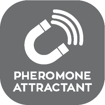 Pheromone Attractant.