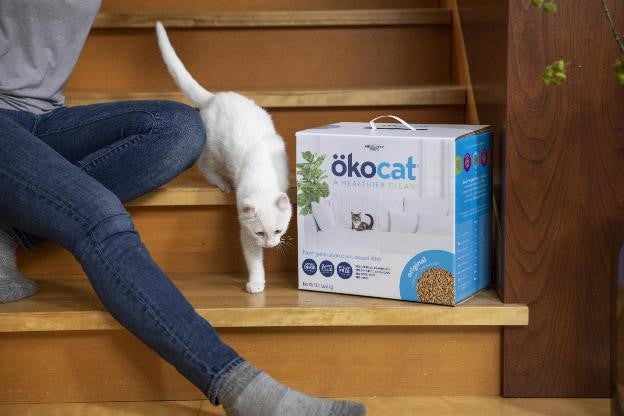 okocat original premium clumping litter with white cat