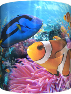 BLUE TANG & CLOWNFISH Mug Cup 300ml Gift Aussie Australia Fish Nemo Dory Great Barrier Reef - fair-dinkum-gifts