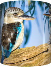Load image into Gallery viewer, BLUE WINGED KOOKABURRA Mug Cup 300ml Gift Native Aussie Australia Animal Wildlife Birds - fair-dinkum-gifts