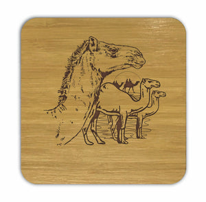 Camels Bamboo Coasters Eco Friendly Set Of 4 Drink Coasters in Box - fair-dinkum-gifts