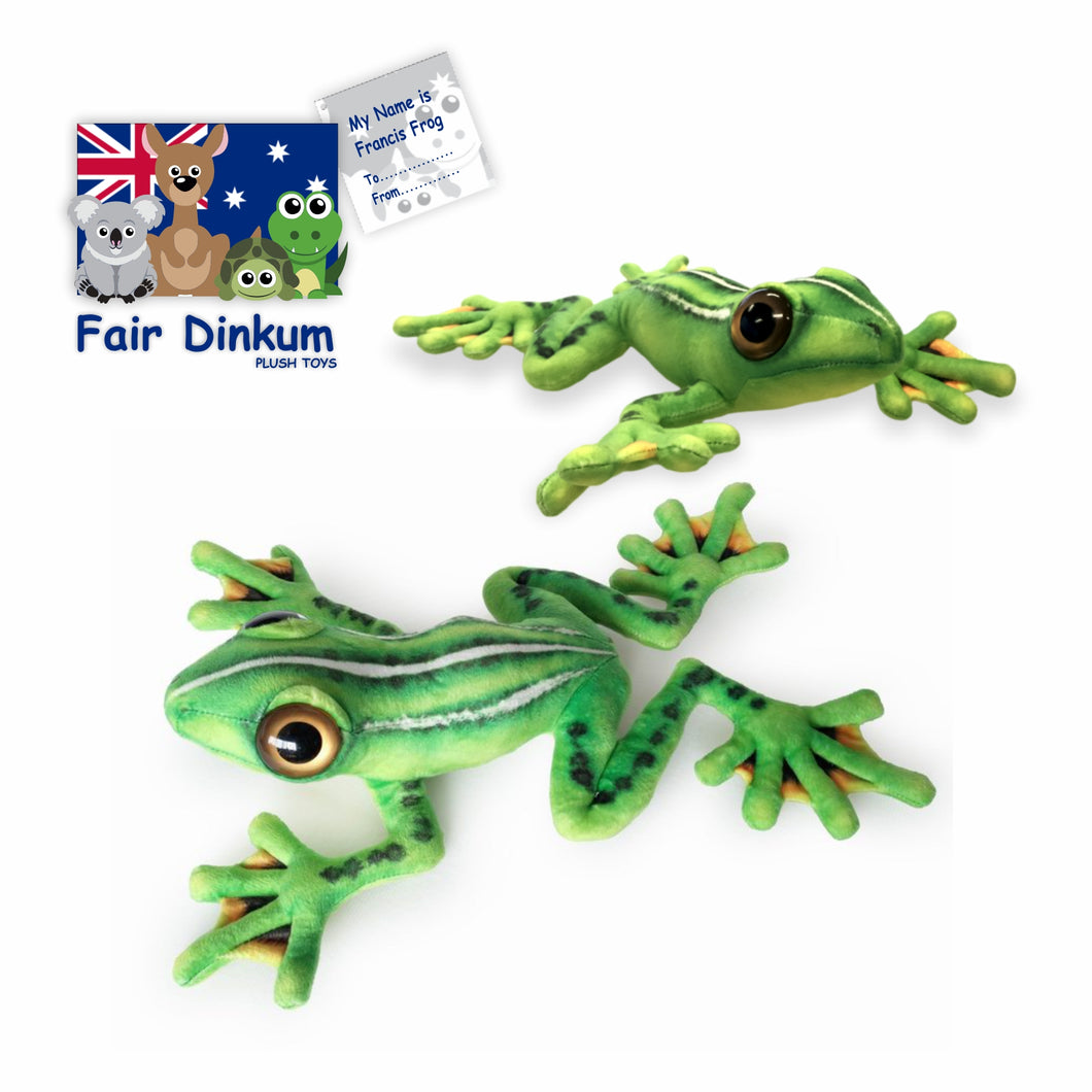 Francis Frog Plush Toy Australia - 38cm - fair-dinkum-gifts