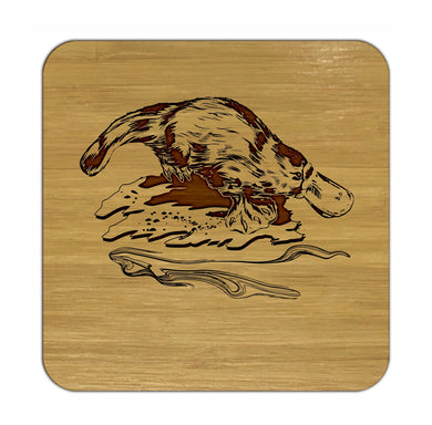 PLATYPUS Bamboo Coasters Eco Friendly Set Of 4 Drink Coasters in Box - fair-dinkum-gifts