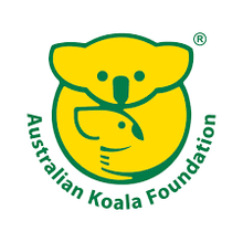 Load image into Gallery viewer, KOALA FOUNDATION EUCALYPTUS SCENTED CANDLE NO TREE NO ME