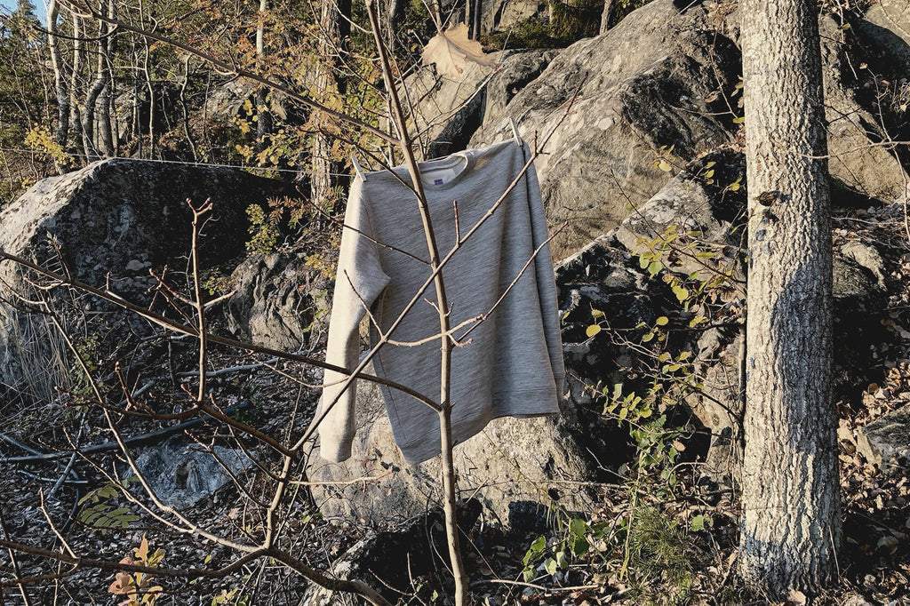 A wool sweatshirt, hanging up on a tree branch in a natural environment