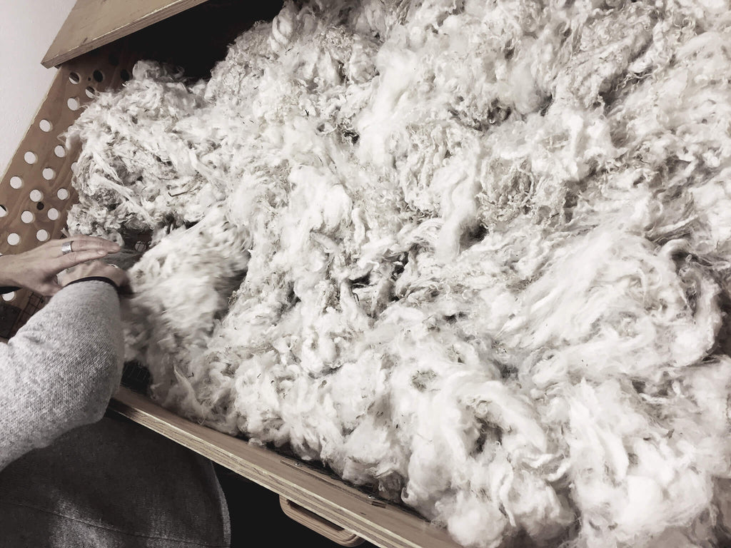 A hand sorting through a crate of newly sheared wool