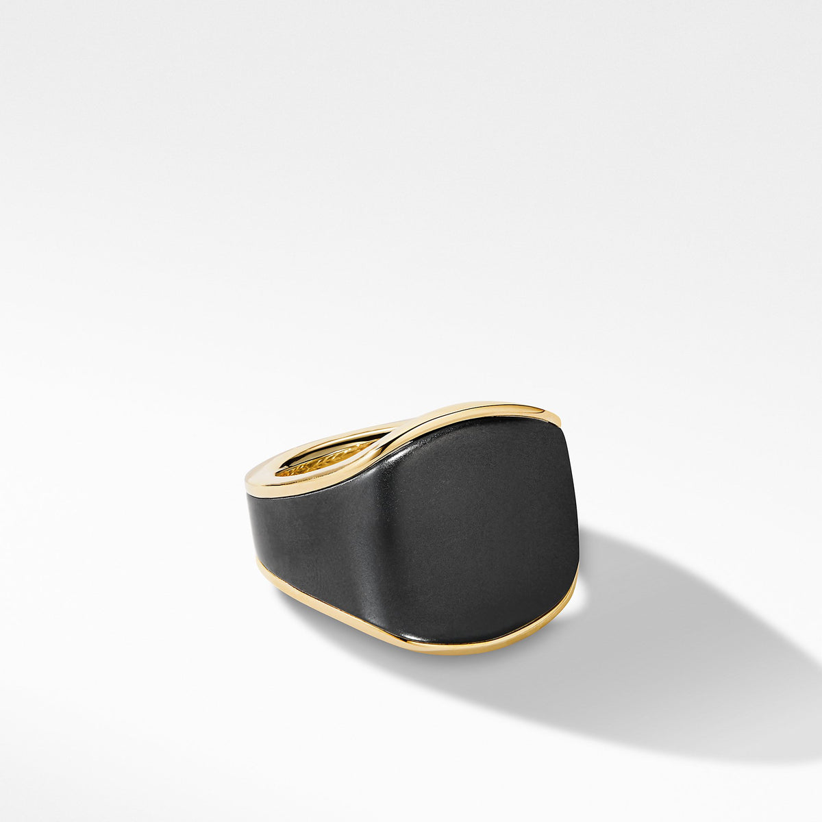 Streamline Signet Ring in 18K Yellow Gold with Black Titanium