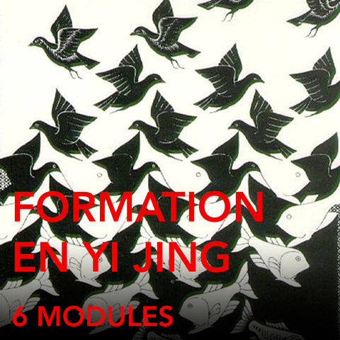 Formation en Yi Jing (Formation complète) (6 modules)
