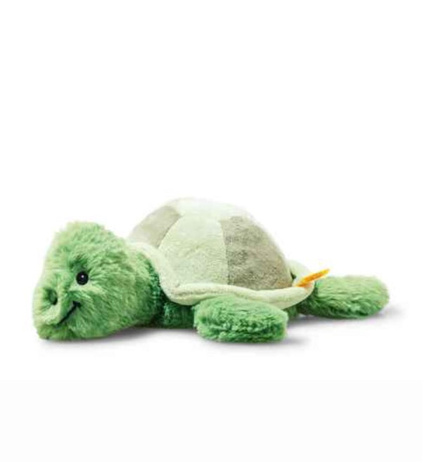"""Tuggy"" Turtle"