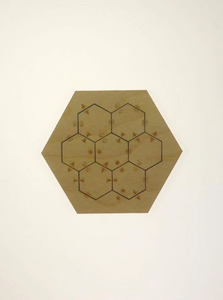 Match the Bees Wooden Puzzle