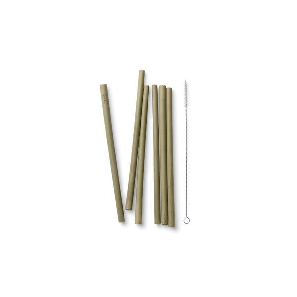 Long Bamboo Straws - Set of 6 with brush