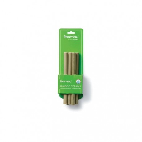 Short Bamboo Straws - Set of 6 with Brush
