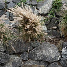 Load image into Gallery viewer, Rockery Rock