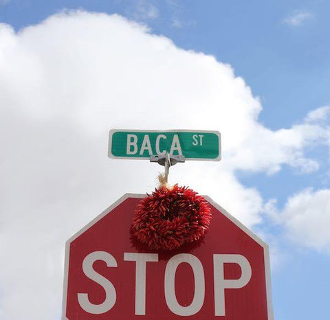 16th Annual Baca Arts Tour