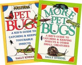 Set of 2-Bugs & More Pet Bugs