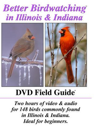 Better Birdwatching DVD-IL&IN