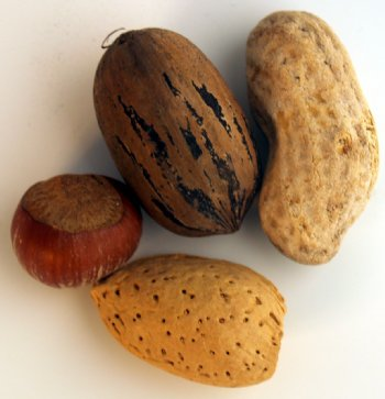 Assorted Nuts - 4