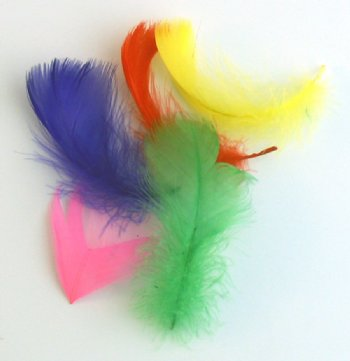 Colorful Feathers- 5