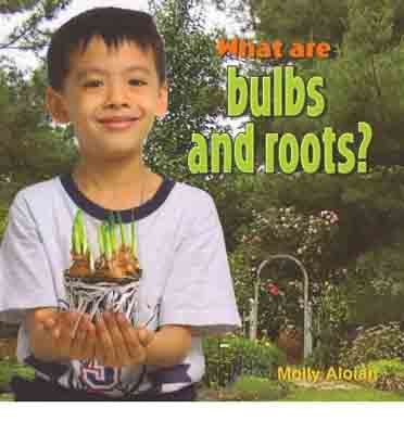 What are Bulbs and Roots