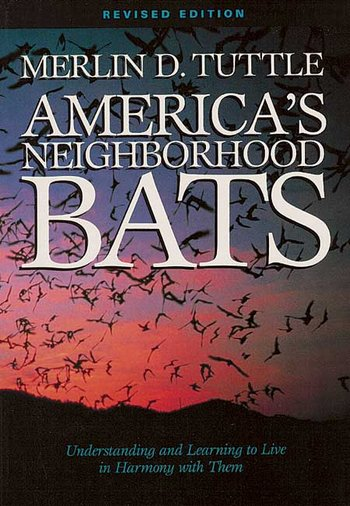 Neighborhood Bats Book