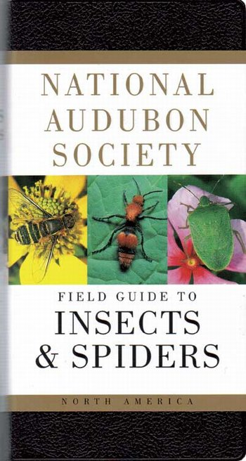 Audubon Insects & Spiders