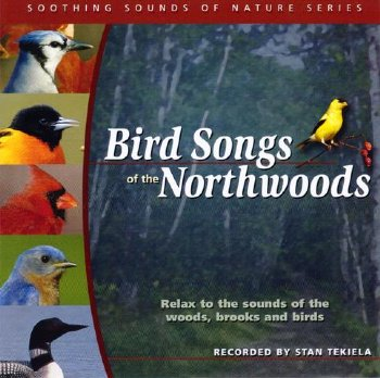 Bird Songs of Northwoods CD