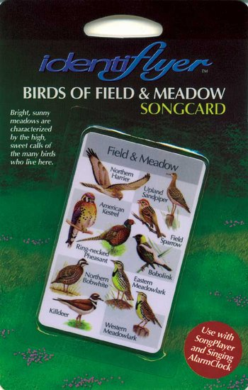 Field and Meadow SongCard