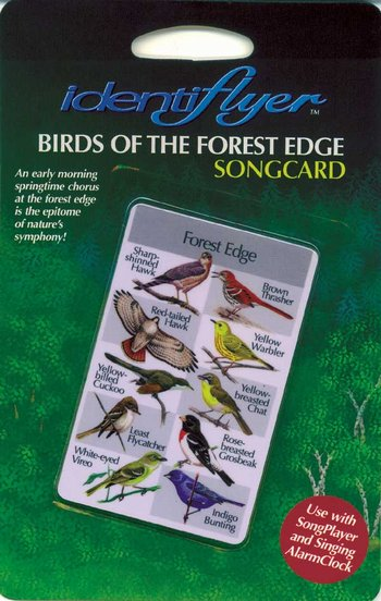 DISCONTINUED Forest Edge SongCard
