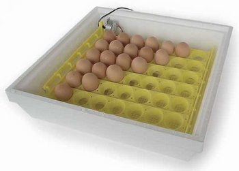 Automatic Egg Turner # 1611