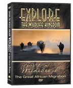 Explore DVD - Wildebeest