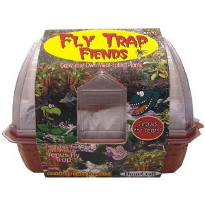 Fly Trap Fiends