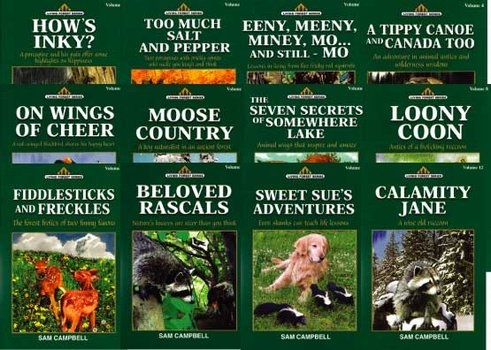 Set of 12 Living Forest Series