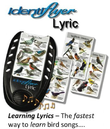 Birdsong Identiflyer Lyric