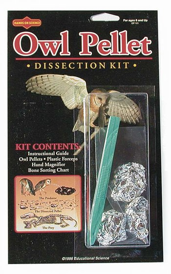 3-Owl Pellet Dissection Kit