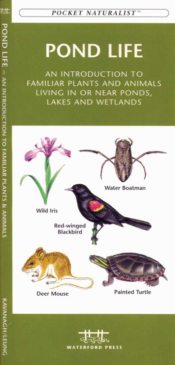 Pond Life - Pocket Naturalist