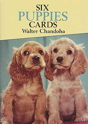 *Postcard Puppies-sd