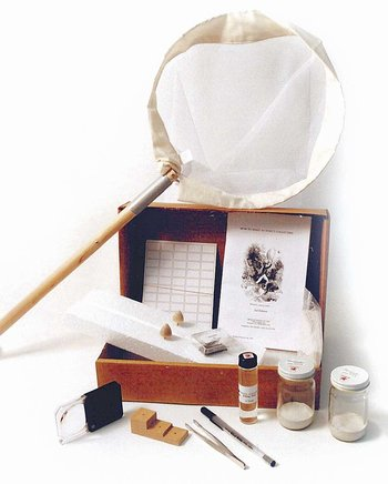 Student Insect Collecting Kit
