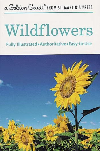 Wildflowers little g.g.