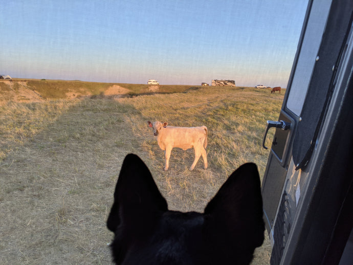 SD:  Off-the-Grid in The Badlands
