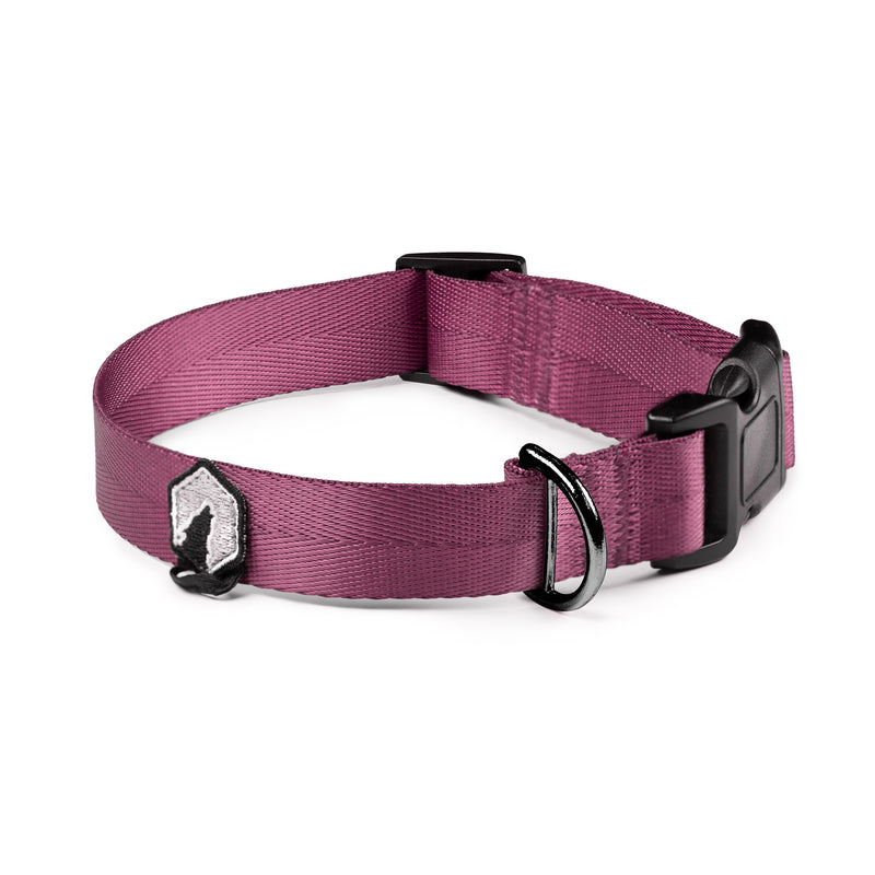Breaker Dog Collar - Plum