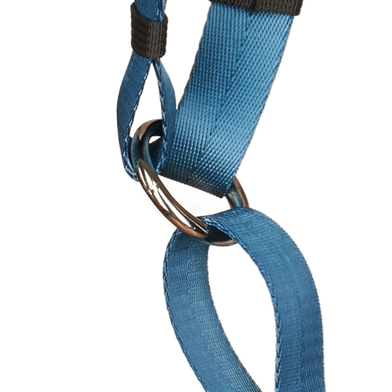 Anchor Dog Harness - O-Ring