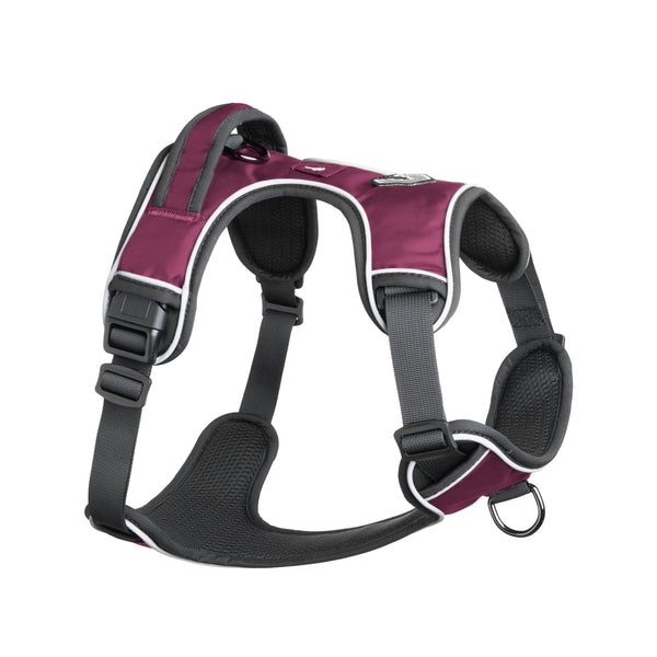 Mesa Dog Harness - Plum