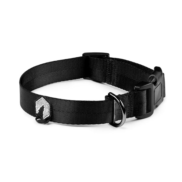 Breaker Dog Collar - Black